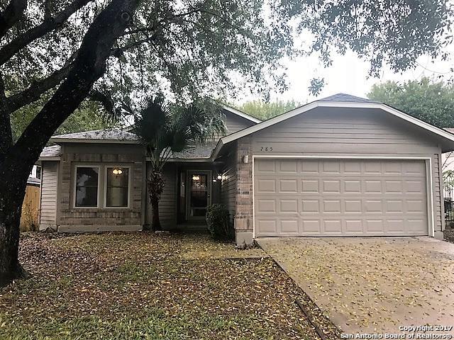 285 Saddlebrook Dr, San Antonio, TX 78245 (MLS #1331514) :: The Castillo Group