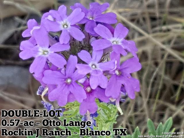 0.57-AC Otto Lange, Blanco, TX 78606 (MLS #1331624) :: NewHomePrograms.com LLC