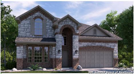 2988 Warwick Park, Bulverde, TX 78163 (MLS #1331767) :: The Castillo Group