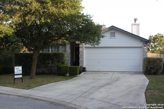 903 Tiger Path, San Antonio, TX 78251 (MLS #1331878) :: Exquisite Properties, LLC