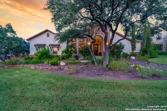 27706 Cascabel Ln, San Antonio, TX 78260 (MLS #1331917) :: The Castillo Group
