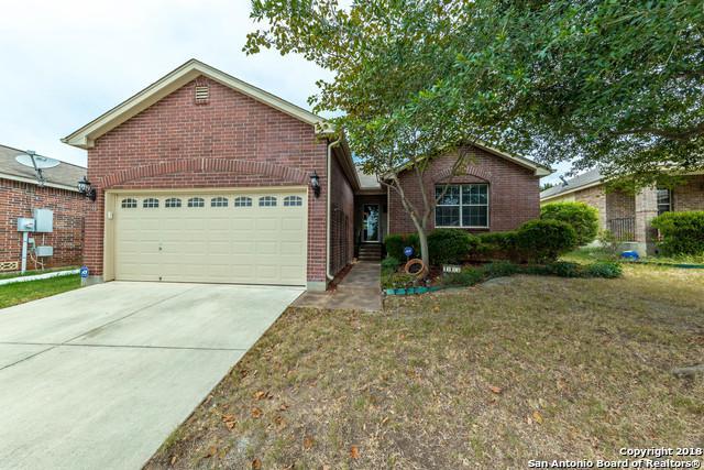 145 Goldenrod Cove, Cibolo, TX 78108 (MLS #1331958) :: NewHomePrograms.com LLC