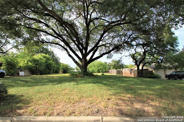 127 Bryker Dr, Terrell Hills, TX 78209 (MLS #1331982) :: The Castillo Group