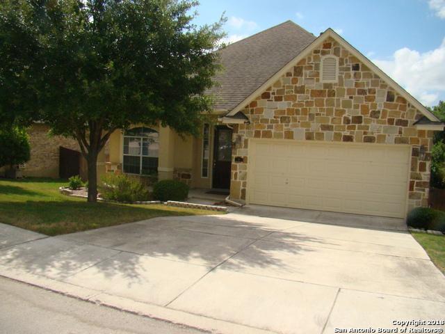 14 Palo Duro Canyon, San Antonio, TX 78258 (MLS #1332175) :: Alexis Weigand Real Estate Group