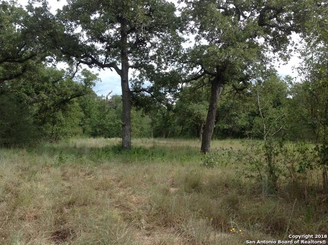 0 E Hwy 97, Nixon, TX 78140 (MLS #1332320) :: Alexis Weigand Real Estate Group