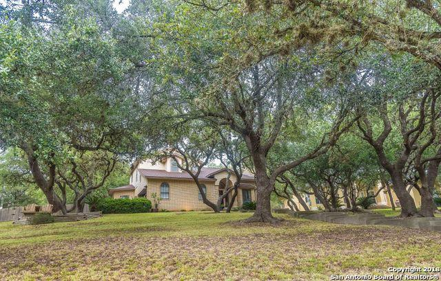 26010 Lame Beaver, San Antonio, TX 78260 (MLS #1332403) :: The Castillo Group