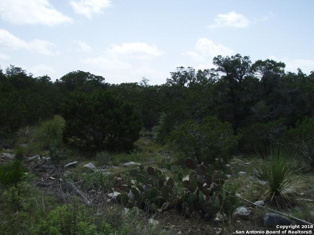 TBD County Road 2748, Mico, TX 78056 (MLS #1332447) :: Magnolia Realty