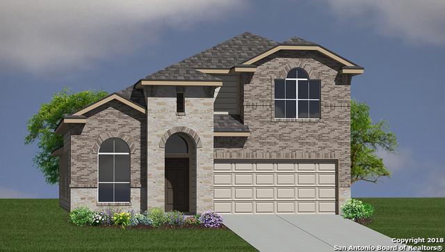 6115 Akin Elm, San Antonio, TX 78261 (MLS #1332719) :: Alexis Weigand Real Estate Group
