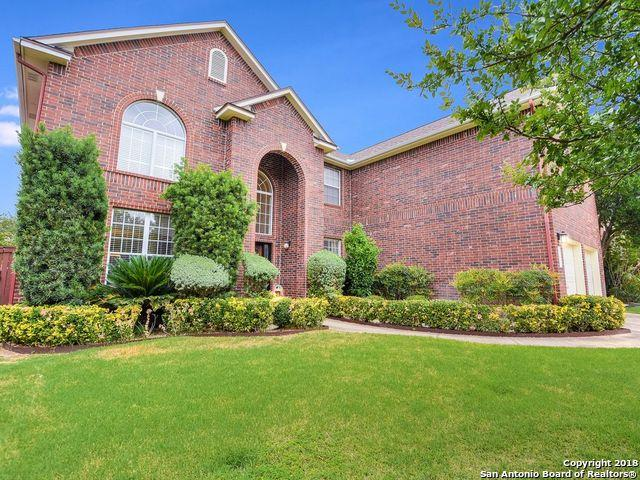 2519 Ox Eye Trail, San Antonio, TX 78258 (MLS #1332801) :: The Castillo Group