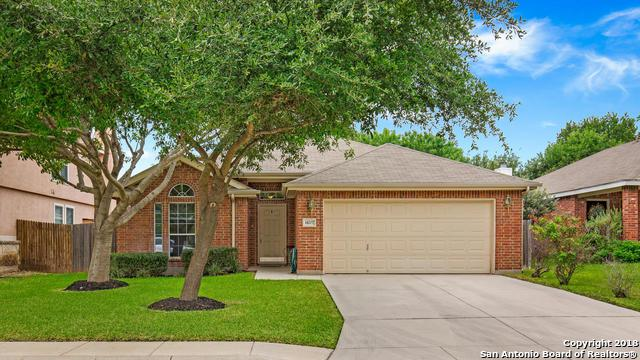 14207 Real Delight, San Antonio, TX 78248 (MLS #1332864) :: Alexis Weigand Real Estate Group