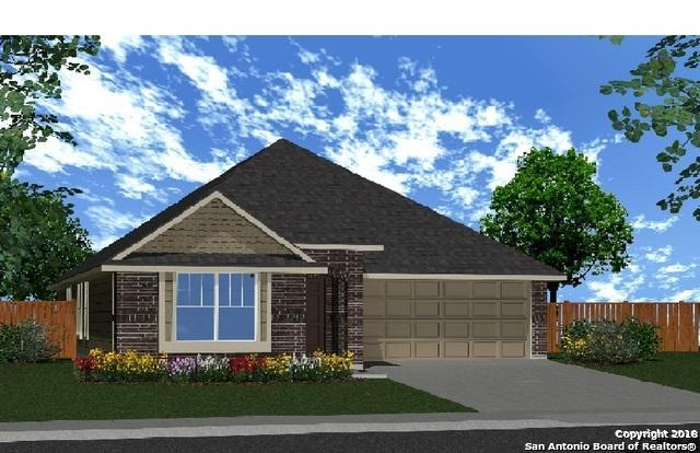 3179 Daisy Meadow, New Braunfels, TX 78130 (MLS #1332970) :: The Castillo Group