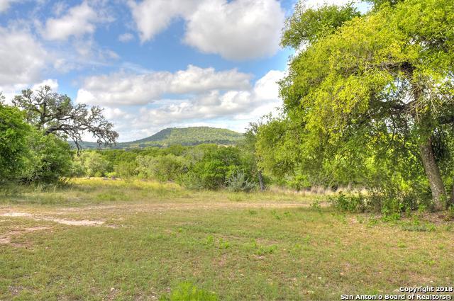 180 Barbarosa Trail N, Comfort, TX 78013 (MLS #1333023) :: Exquisite Properties, LLC