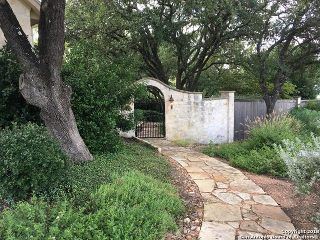 252 Well Springs, Boerne, TX 78006 (MLS #1333025) :: ForSaleSanAntonioHomes.com
