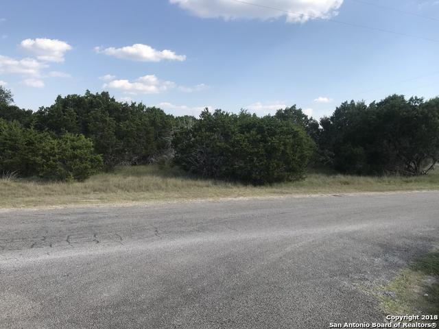 000 Narrows, Blanco, TX 78606 (MLS #1333035) :: Exquisite Properties, LLC