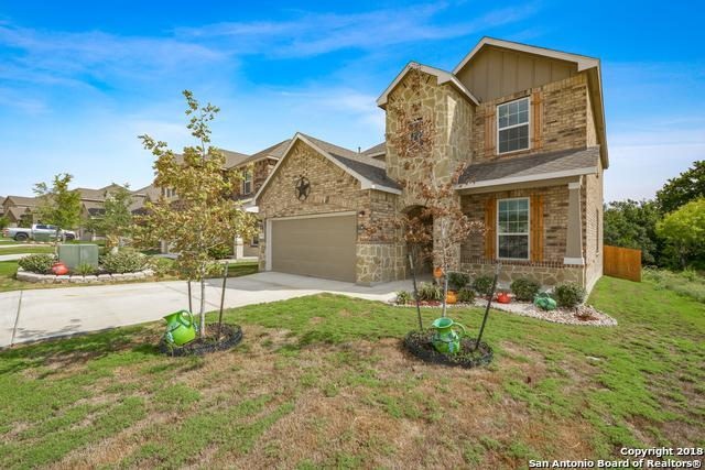 13911 Laurel Branch, San Antonio, TX 78245 (MLS #1333155) :: The Castillo Group