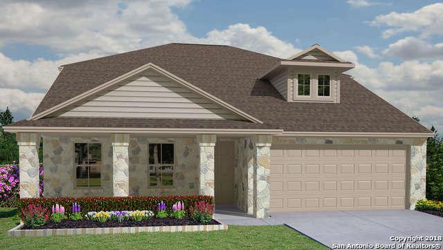 473 Moonvine Way, Seguin, TX 78130 (MLS #1333208) :: Magnolia Realty