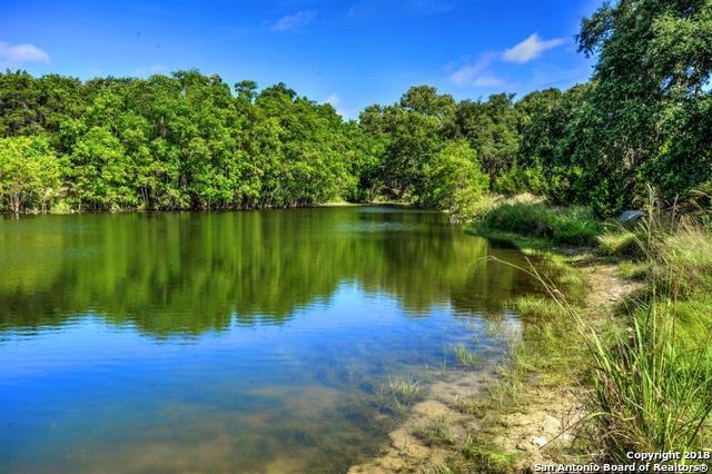 1556 Canyon Lake Dr, Canyon Lake, TX 78133 (MLS #1333331) :: Exquisite Properties, LLC
