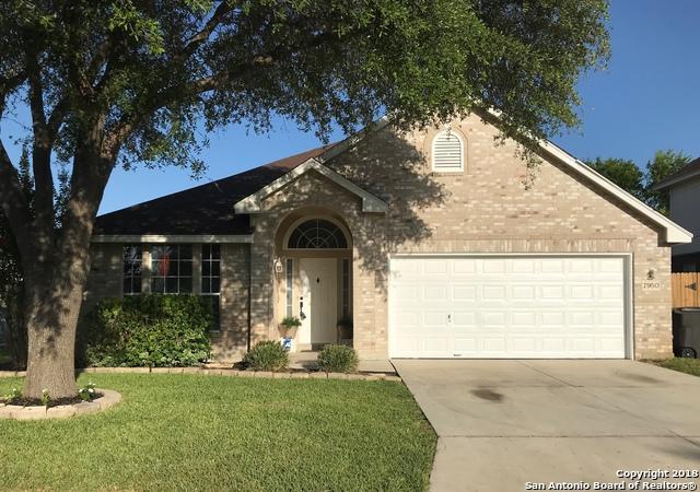 7950 Avellano, San Antonio, TX 78250 (MLS #1333360) :: The Castillo Group