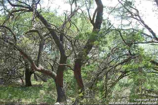 LOT 39 PARK RD Pr 1524, Medina, TX 78003 (MLS #1333430) :: Magnolia Realty