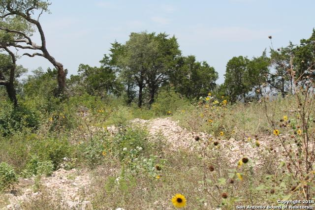 LOT 15 Pr 2773, Mico, TX 78056 (MLS #1333674) :: Berkshire Hathaway HomeServices Don Johnson, REALTORS®