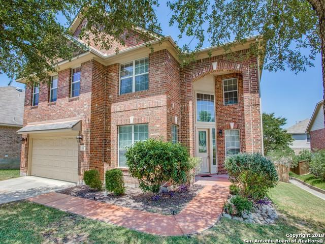 810 Mesa Loop, San Antonio, TX 78258 (MLS #1333676) :: Alexis Weigand Real Estate Group