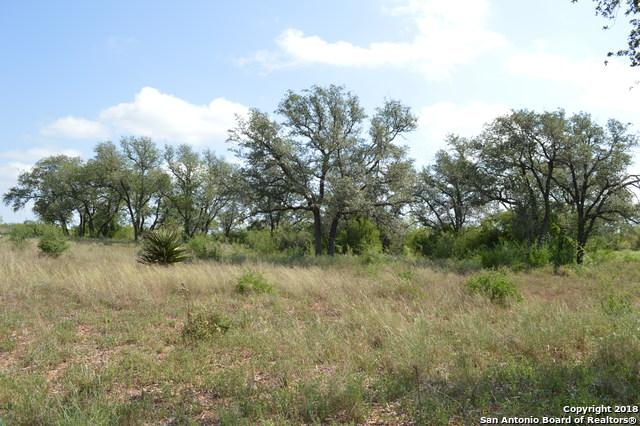 995 County Road 2729, Bigfoot, TX 78005 (MLS #1333737) :: Alexis Weigand Real Estate Group