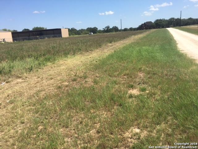 1784 Us Highway 181 N, Floresville, TX 78114 (MLS #1333771) :: The Castillo Group