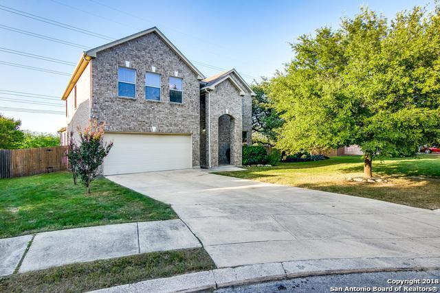 4311 Palm Pt, San Antonio, TX 78259 (MLS #1333991) :: Exquisite Properties, LLC