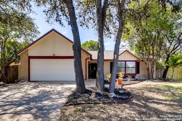 9323 Caen, San Antonio, TX 78250 (MLS #1334014) :: Alexis Weigand Real Estate Group