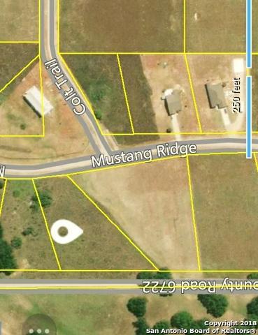 000 Mustang Rdg, Natalia, TX 78059 (MLS #1334072) :: Alexis Weigand Real Estate Group