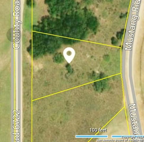 0000 Mustang Rdg, Natalia, TX 78059 (MLS #1334075) :: Alexis Weigand Real Estate Group