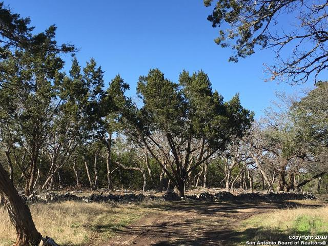 123 Ginger Rd., Kerrville, TX 78028 (MLS #1334177) :: The Castillo Group