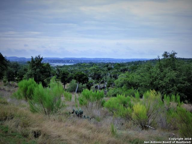 1705 Lake Ridge Blvd, Canyon Lake, TX 78133 (MLS #1334197) :: Magnolia Realty
