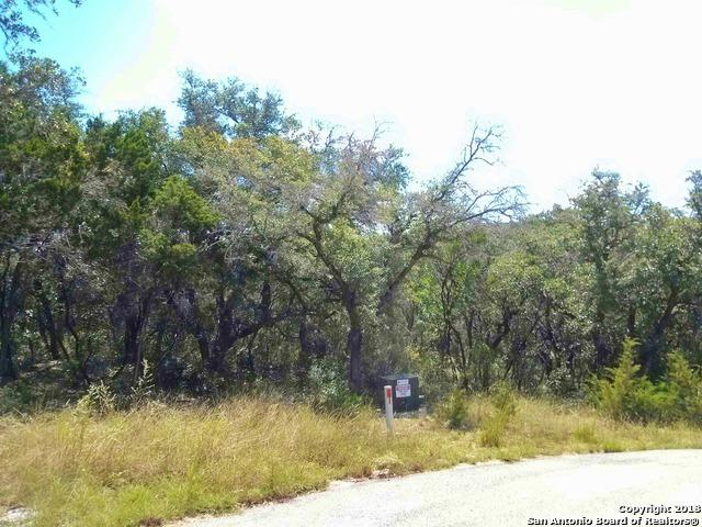151 Private Road 1738, Mico, TX 78056 (MLS #1334273) :: Magnolia Realty