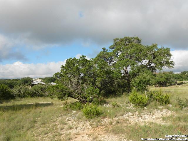 111 Flat Creek, Canyon Lake, TX 78133 (MLS #1334437) :: Alexis Weigand Real Estate Group
