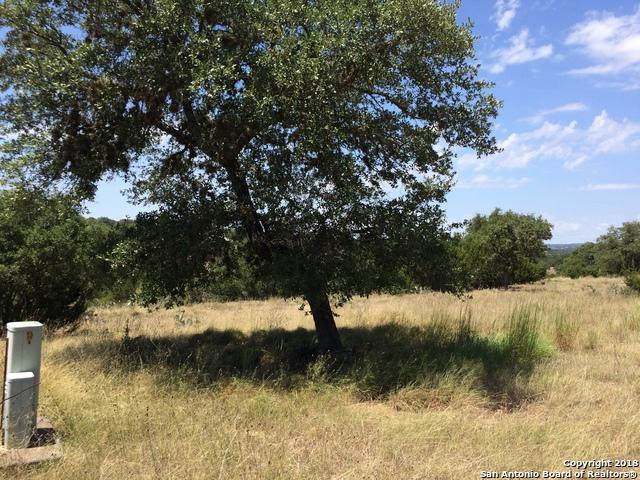 991 Kings Cove Dr, Canyon Lake, TX 78133 (MLS #1334455) :: Magnolia Realty