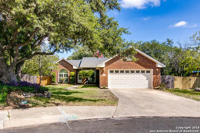 8633 Wood Falls, San Antonio, TX 78251 (MLS #1334901) :: Alexis Weigand Real Estate Group