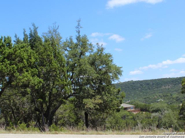 1417/1423 Johnson Rd., Canyon Lake, TX 78133 (MLS #1334905) :: Exquisite Properties, LLC