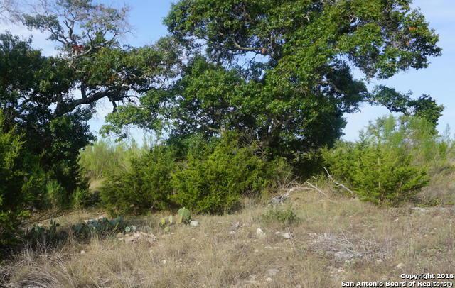 1062 Las Brisas Dr, Canyon Lake, TX 78133 (MLS #1335056) :: Magnolia Realty