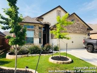 12032 Cathedral Peak, San Antonio, TX 78254 (MLS #1335404) :: Alexis Weigand Real Estate Group
