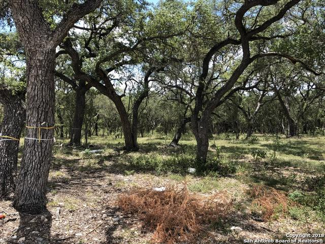 LOT 2058 Wellesley Wood, Shavano Park, TX 78231 (MLS #1335448) :: Exquisite Properties, LLC