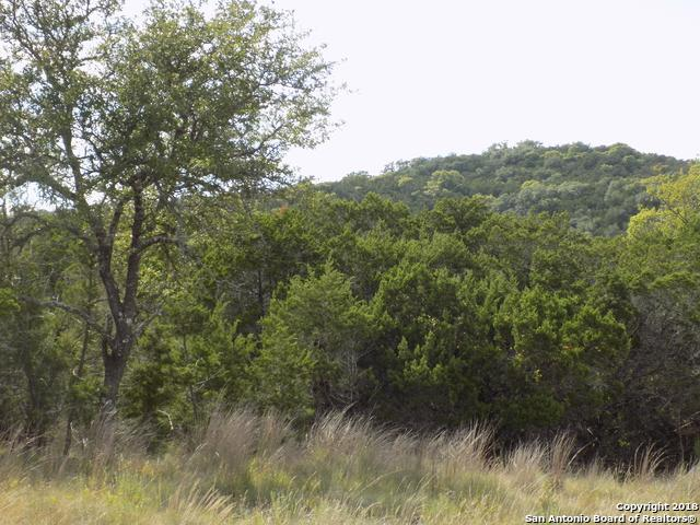 157 ACRES Fm 474, Boerne, TX 78006 (MLS #1335606) :: Ultimate Real Estate Services