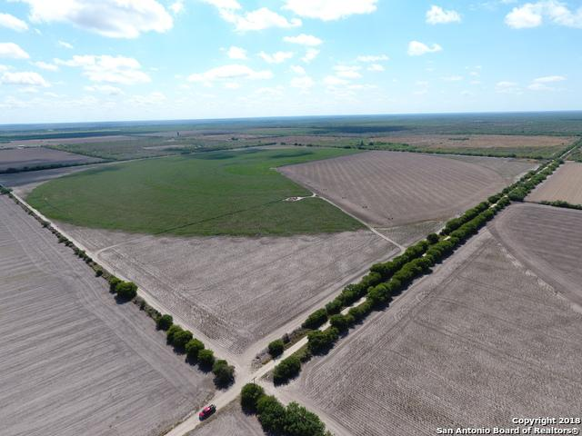 000 Ponder Rd, La Pryor, TX 78872 (MLS #1335647) :: Santos and Sandberg