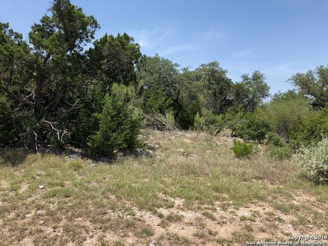 19307 Terra Brook, San Antonio, TX 78255 (MLS #1335742) :: Magnolia Realty