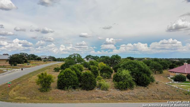 946 Cross Oak, New Braunfels, TX 78132 (MLS #1335832) :: Erin Caraway Group