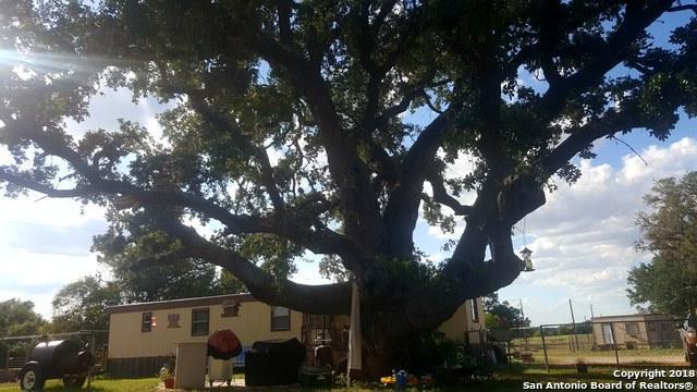 348 County Road 326, Adkins, TX 78101 (MLS #1335869) :: ForSaleSanAntonioHomes.com