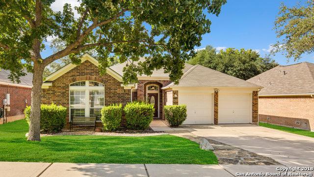 1206 Asherton Way, San Antonio, TX 78258 (MLS #1335925) :: Alexis Weigand Real Estate Group