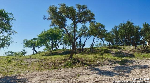 23519 Avila Ridge, San Antonio, TX 78255 (MLS #1336132) :: Berkshire Hathaway HomeServices Don Johnson, REALTORS®