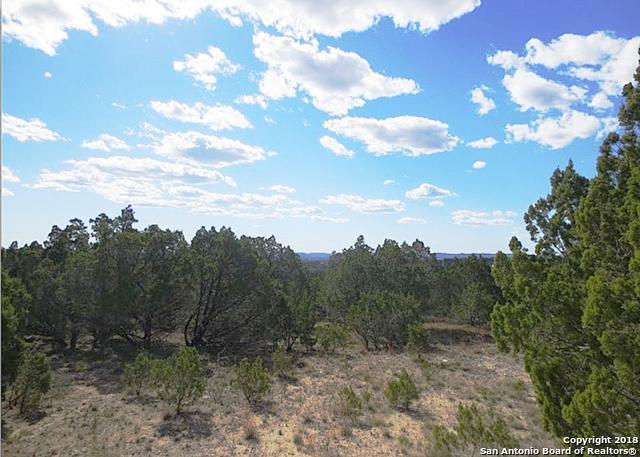 LOT 9 Bear Springs Trl, Pipe Creek, TX 78063 (MLS #1336139) :: Magnolia Realty