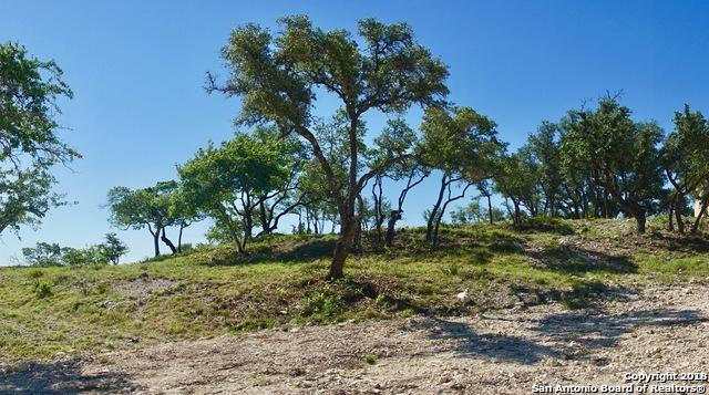 LOTS 32 & 33 Avila Ridge, San Antonio, TX 78255 (MLS #1336140) :: Magnolia Realty